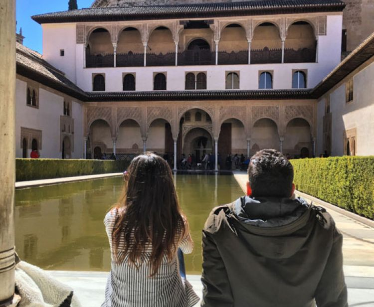 Group excursion from Seville to Granada: Alhambra, sensations and experiences