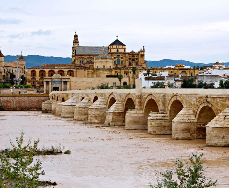 Day Trip from Seville to Cordoba