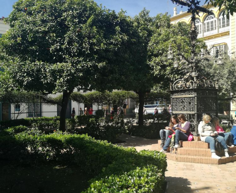 Seville Cathedral and Santa Cruz Private Tour