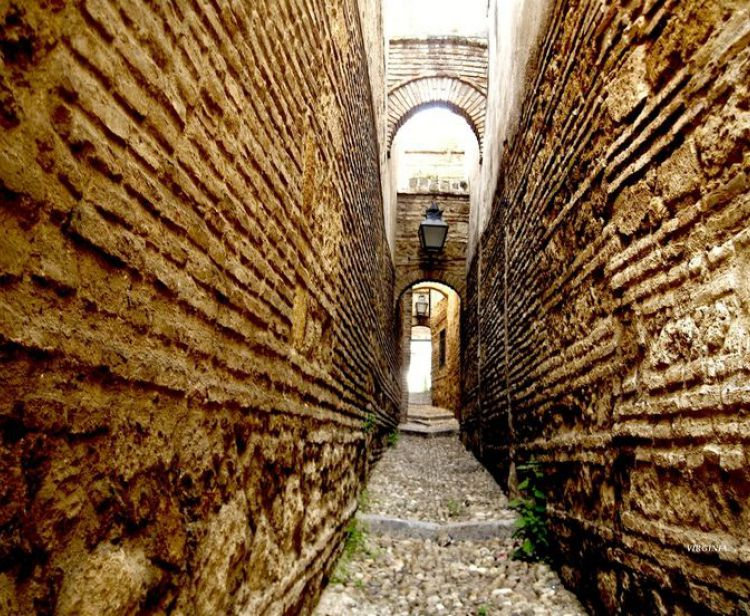 Guided Tour Patios of Cordoba