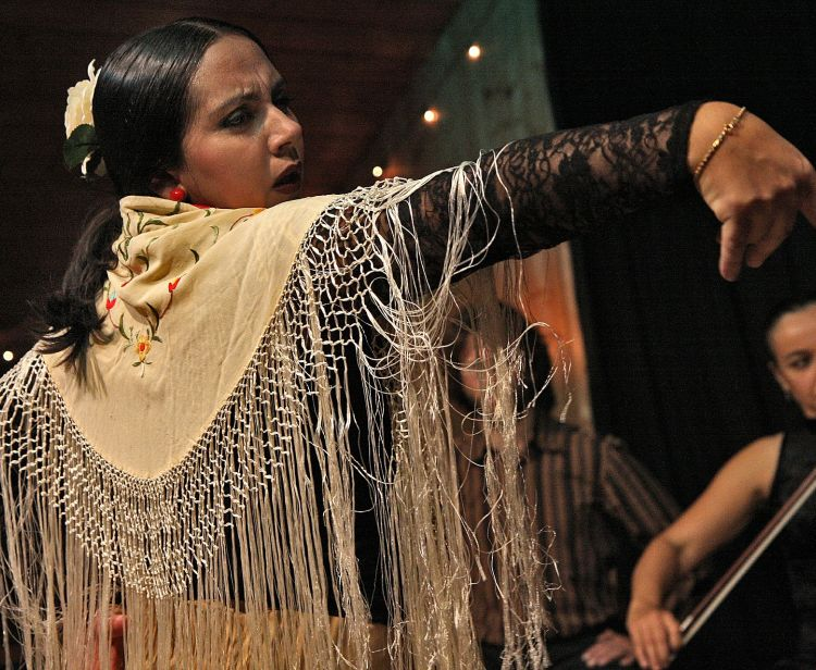 Alcazar Tour  + Flamenco Show