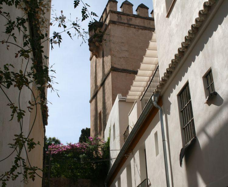 Seville Santa Cruz Jewish Quarter Tour + Tour inside the Cathedral & Giralda