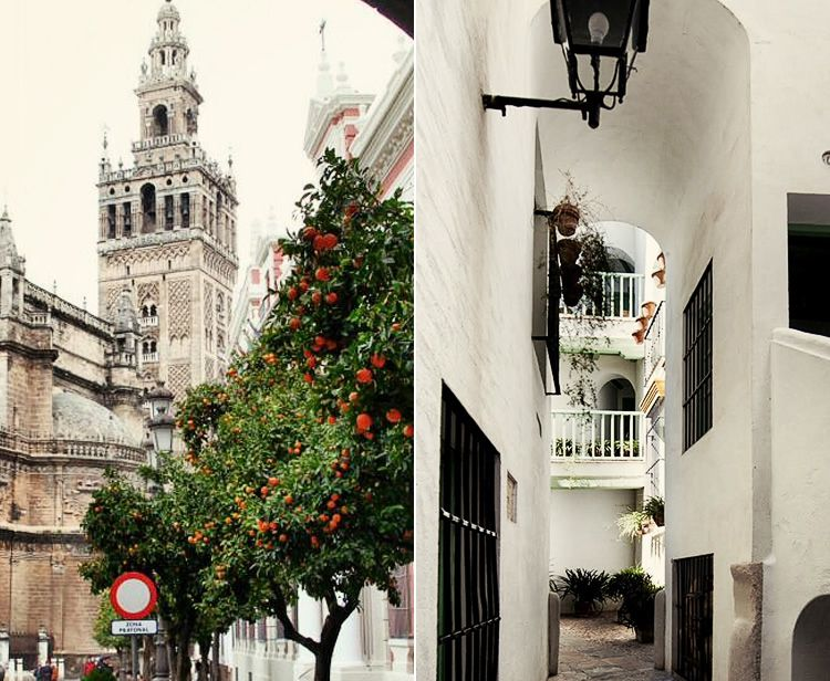 Guided Tour Alcazar & Cathedral-Giralda