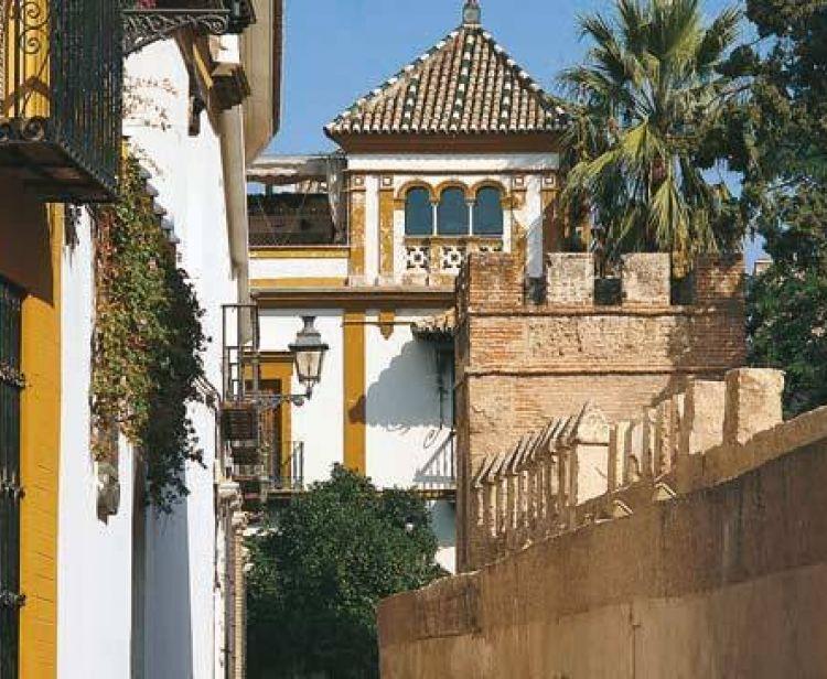 Santa Cruz Jewish Quarter Tour +  Triana