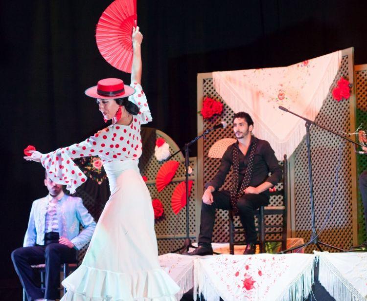 Flamenco Tour + Bullring