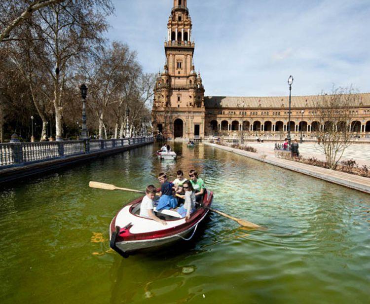Tour Privado Santa Cruz y Plaza de España de Sevilla