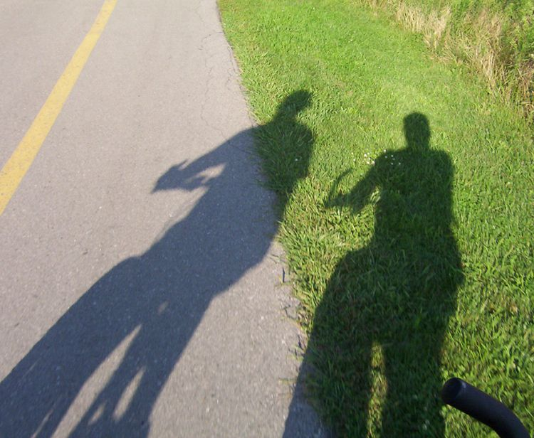 Tour en bici por sevilla