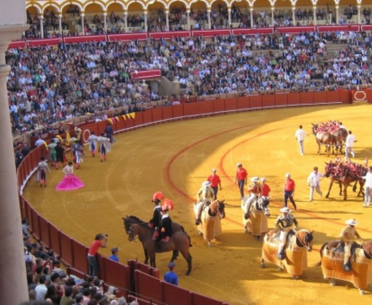 Flamenco Tour + Plaza de Toros