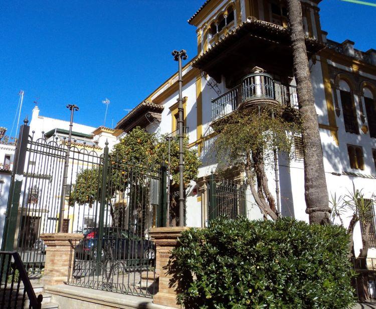 Barrio Santa Cruz + Plaza de Toros de Sevilla