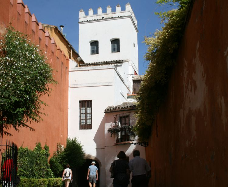 Tour barrio santa cruz en sevilla espect culo de for Espectaculos en sevilla hoy