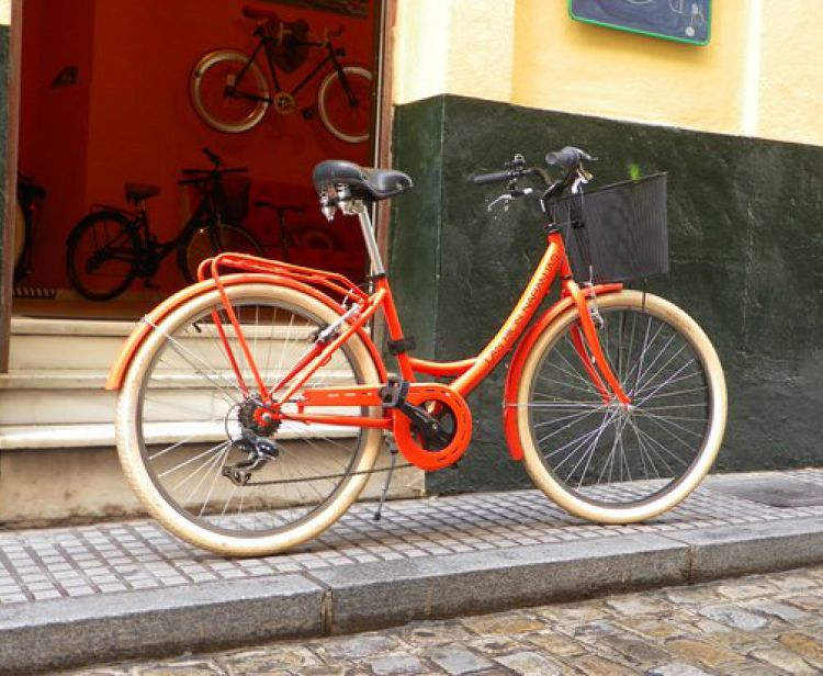 Tour en Bici Privado Sevilla
