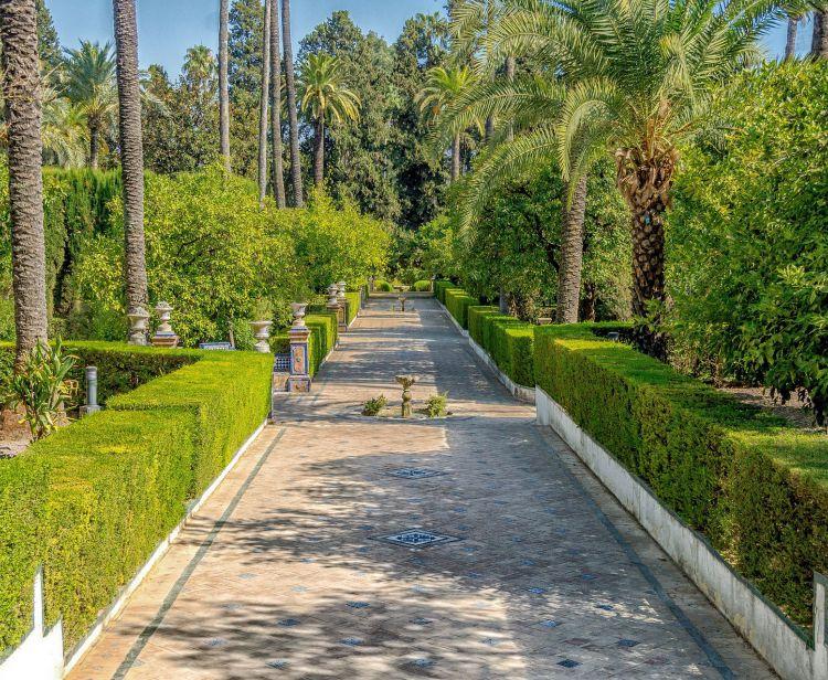 Visita con Guia al Alcázar y  Catedral de Sevilla