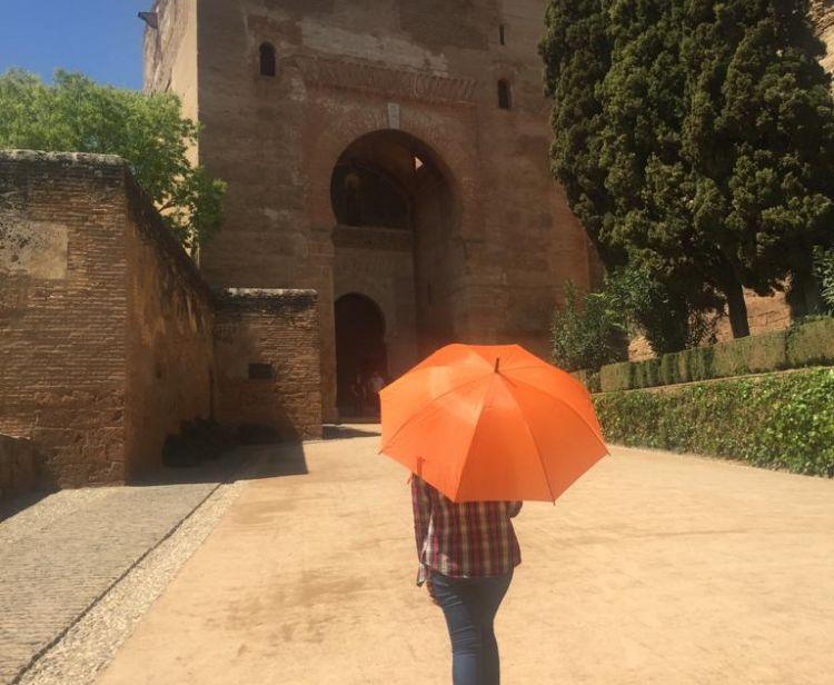 Tour de la ville de l'Alhambra