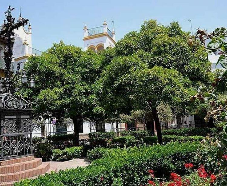 Santa Cruz et Plaza de España