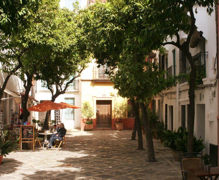 Tour guidé dans L´Alcazar de Séville  + Tour du Quartier Juif Santa Cruz