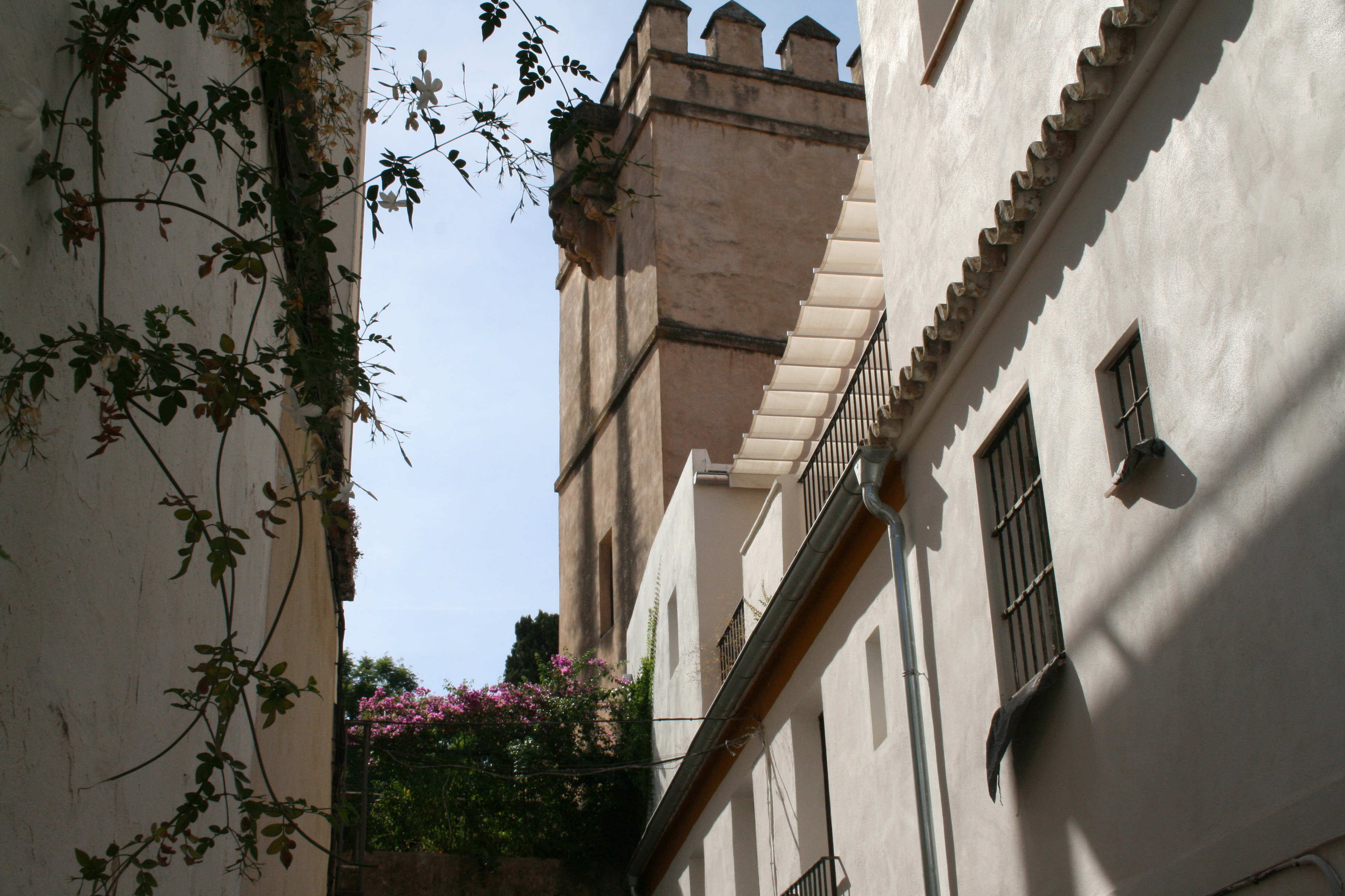 Get to know Seville in 10 minutes