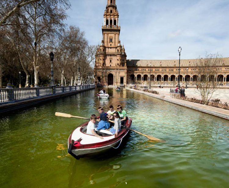 Jewish Quarter and Plaza de España Seville Private Tour