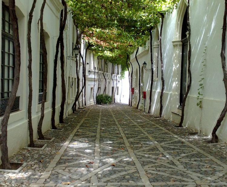 Jerez  Private Tour (2hs)