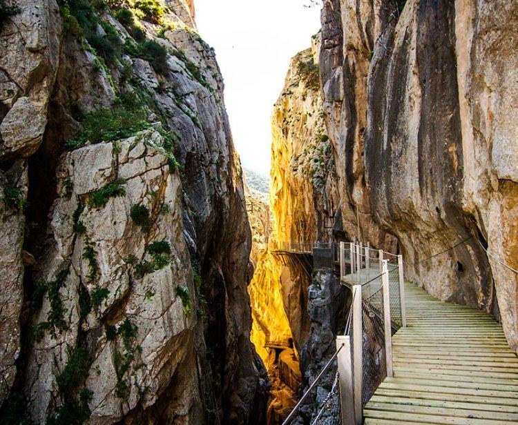 Visit the Caminito del Rey