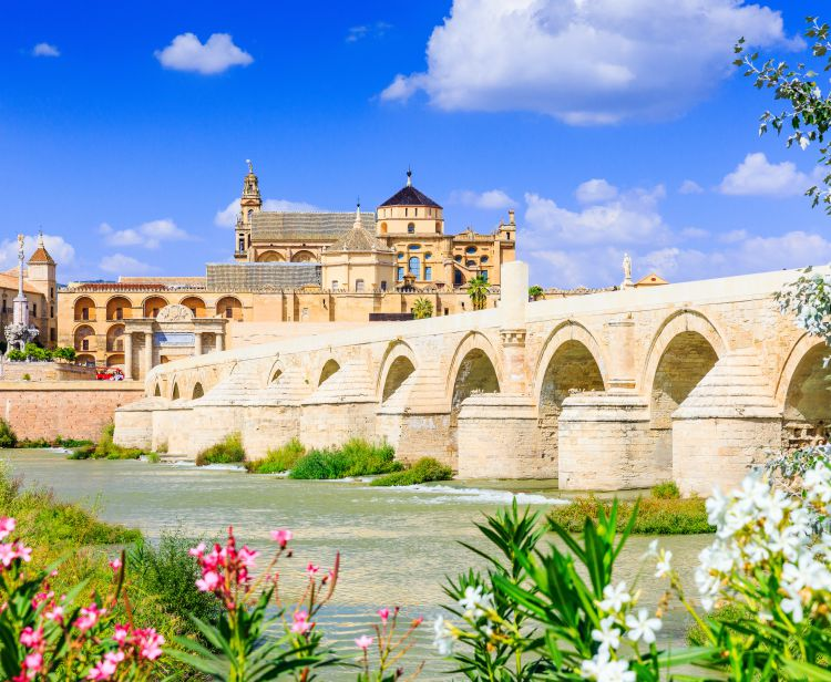 Guided Tour Patios of Cordoba