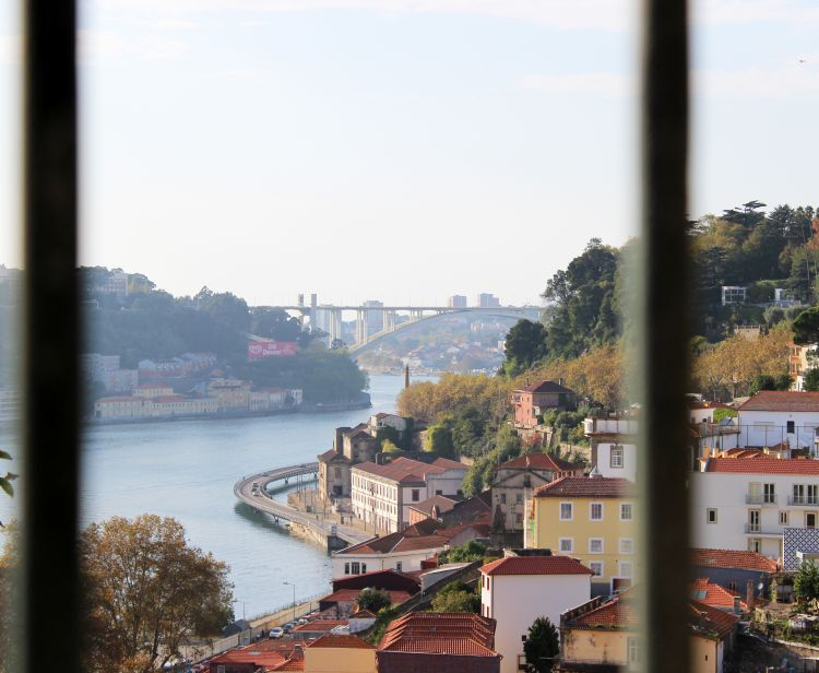 Porto Cultural Walking City Tour