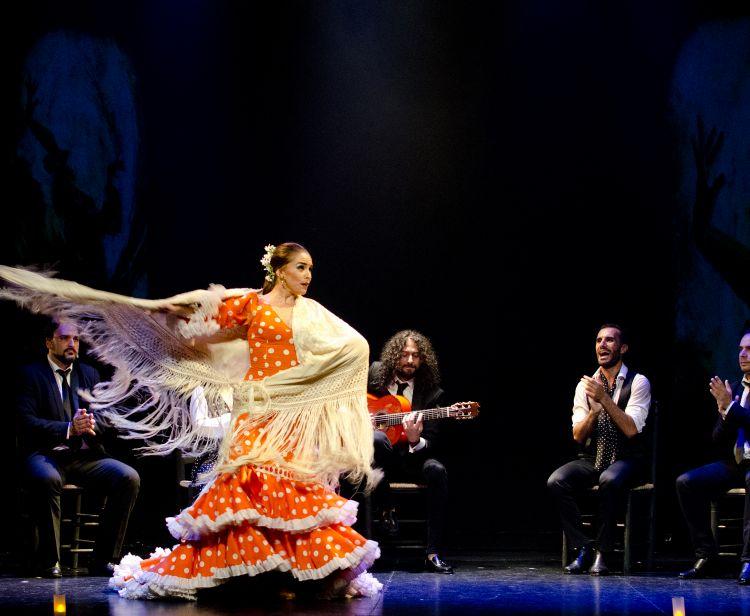 Flamenco theatre Madrid