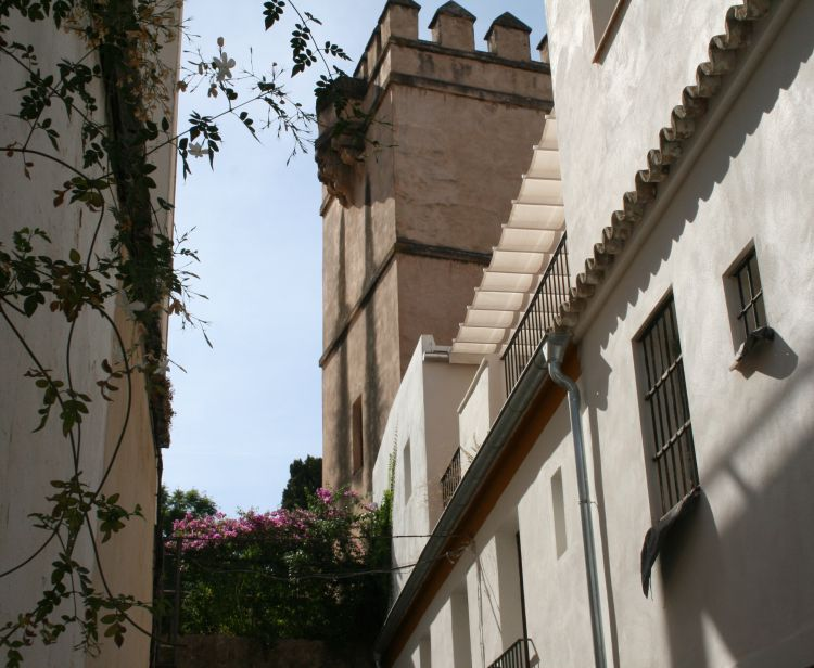 Seville Santa Cruz Jewish Quarter Tour + Tour inside the Cathedral & Giralda