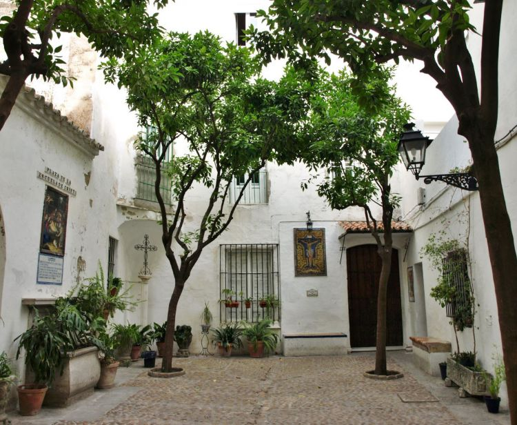 Tour inside the Royal Alcazar + Seville Santa Cruz Jewish Quarter Tour