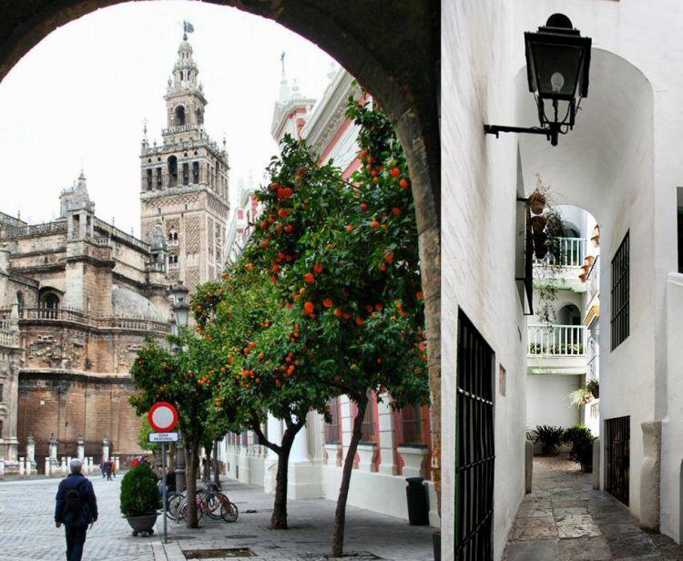 Tour del quartiere ebraico di Santa Cruz + Visita guidata alla Giralda e alla Cattedrale di Siviglia