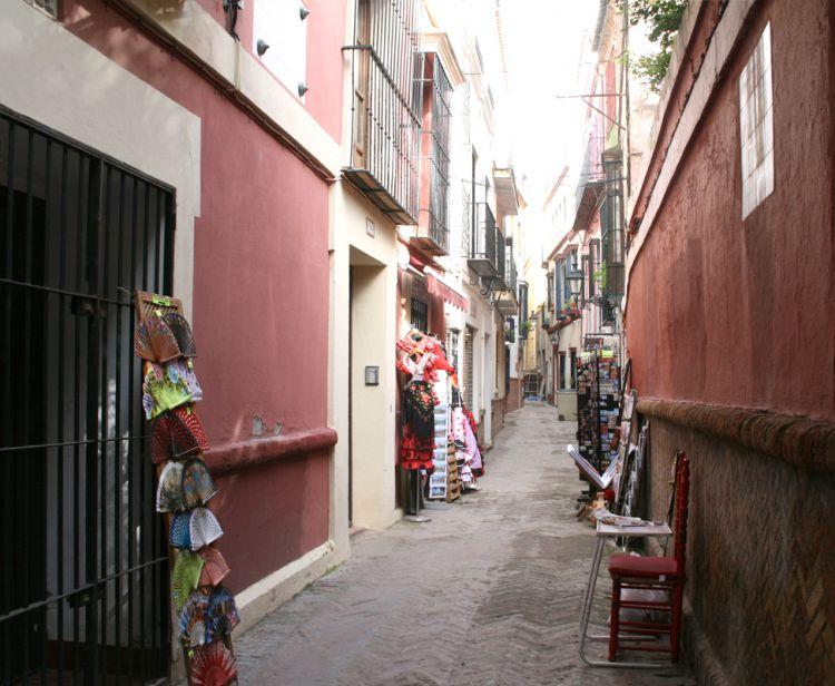 Tour del quartiere ebraico di Santa Cruz + spettacolo di Flamenco a Siviglia