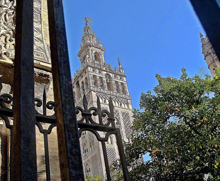Visita Guidata dell'Alcazar di Siviglia + Visita guidata alla Giralda e alla Cattedrale di Siviglia + Tour del quartiere ebraico di Santa Cruz