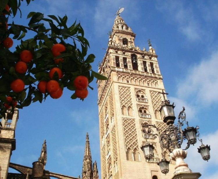 Catedral + Flamenco