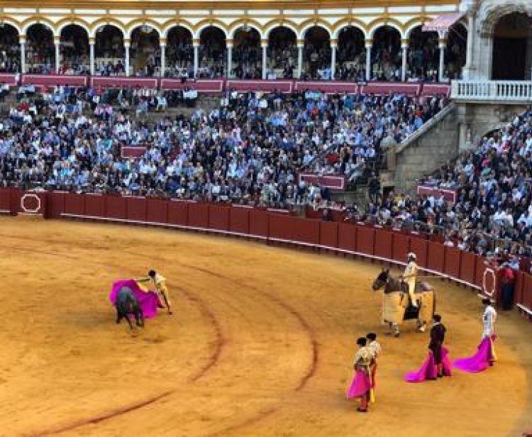Triana e Plaza de Toros