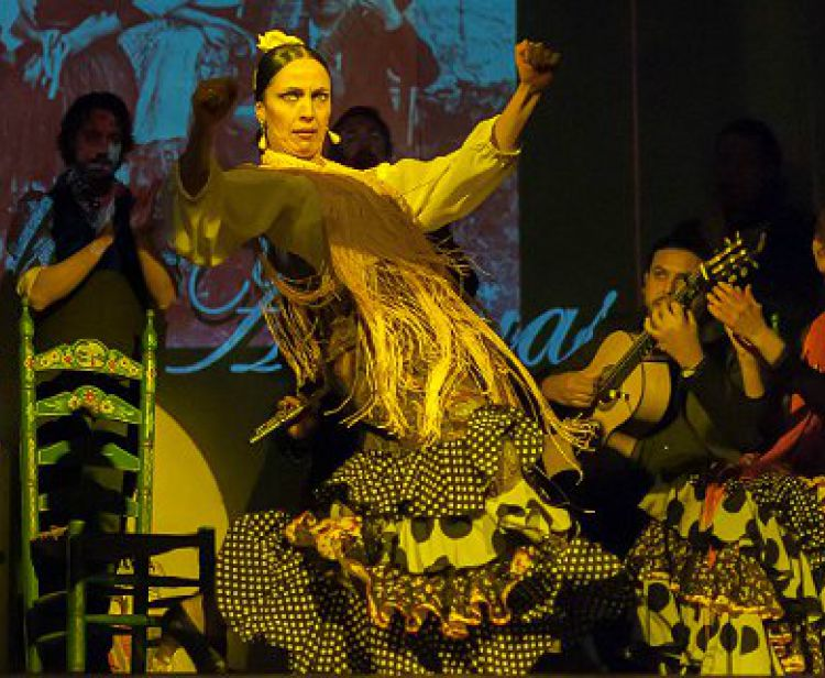 Фламенко шоу в Малаге