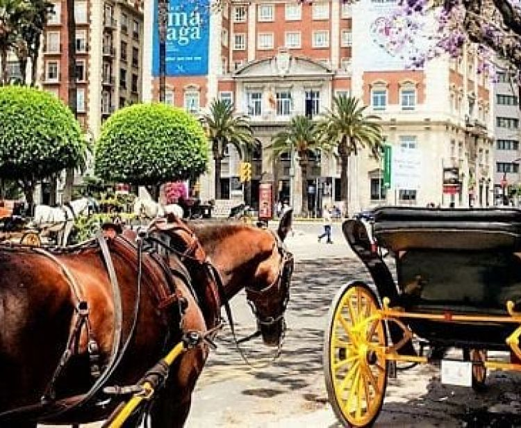 Horse-drawn carriage ride 60 Min