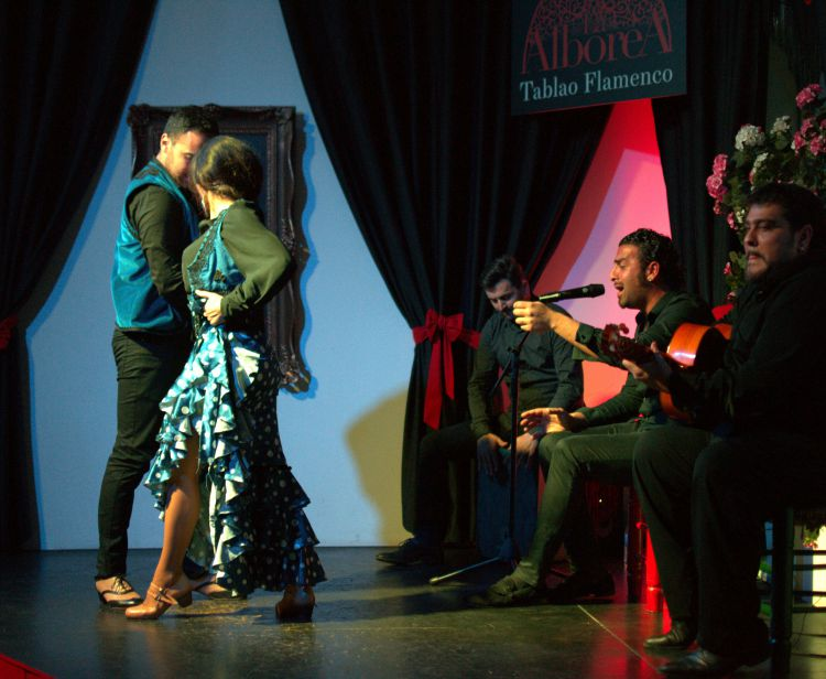 Фламенко в центре Гранады + мясная тарелка